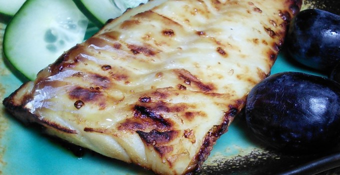 Miso-Marinated Broiled Fish